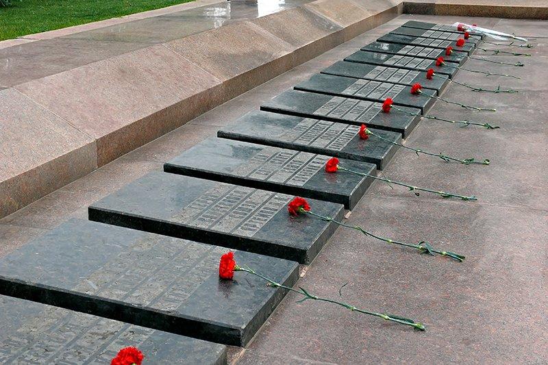 В Николаеве мирно отметили День Победы (ФОТОРЕПОРТАЖ), фото-17