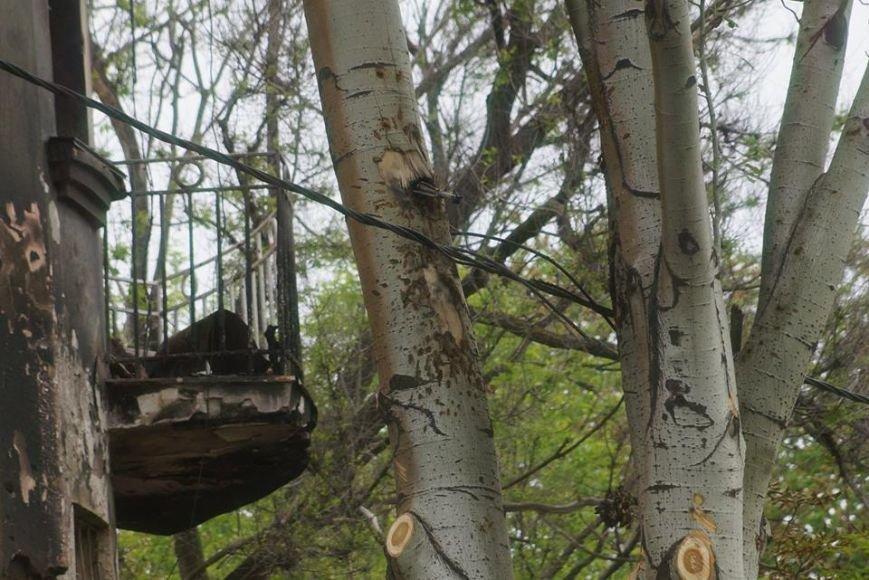 Эхо вчерашней войны! Мариупольцы обнаружили в дереве... гранату (Фотофакт), фото-1
