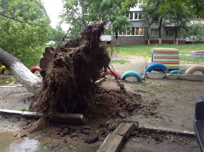 Погода наробила лиха: у Львові буря повалила дерево на дитячий майданчик (ФОТО), фото-1