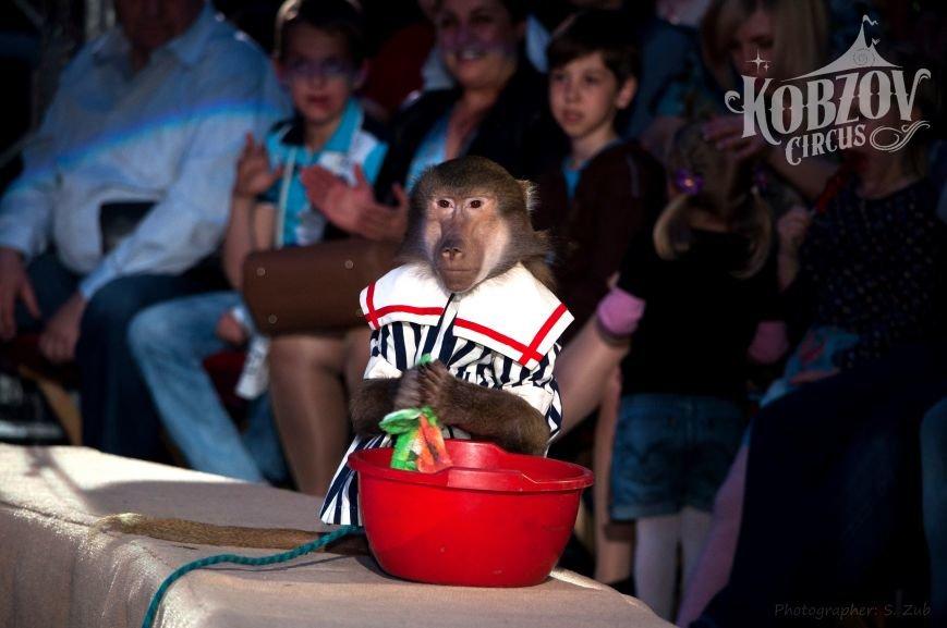 Новое грандиозное цирковое шоу «Тропикана» с 30 мая в Кировограде!, фото-4