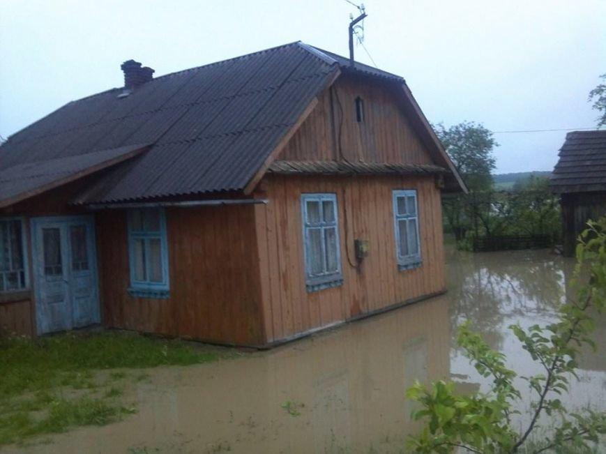Львів'янам, чиї будинки та худоба, пішли під воду дадуть по … 1000 гривень (ФОТО), фото-10