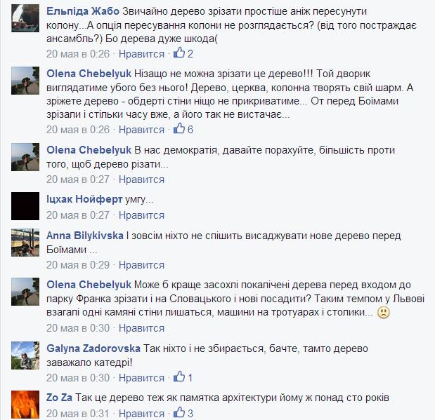 У Фейсбуку вирішують, чи зрізати липу на Вірменський, яка руйнує пам'ятку архітектури (ФОТО), фото-4