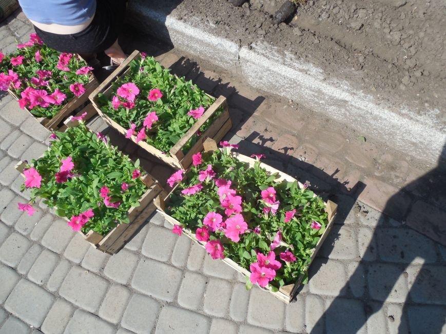 Харьковские студенты-флористы украсили памятник Пушкину (ФОТО), фото-2