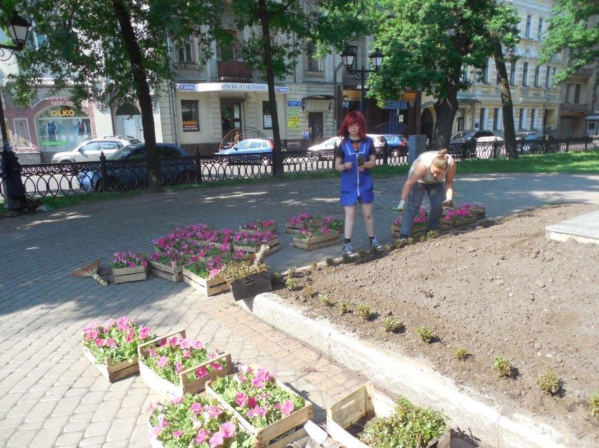 Харьковские студенты-флористы украсили памятник Пушкину (ФОТО), фото-3