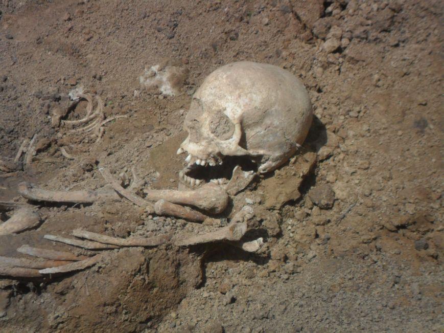 У Львові розкопали скелети жінок та дітей (ФОТО), фото-3