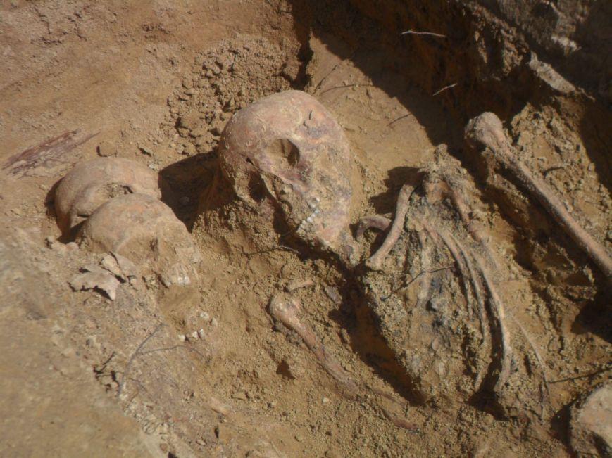 У Львові розкопали скелети жінок та дітей (ФОТО), фото-1