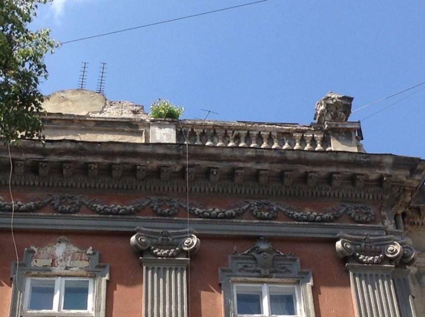 У Львові на дахах ростуть дерева. Як із ними бореться Садовий і чиновники (ФОТО), фото-7