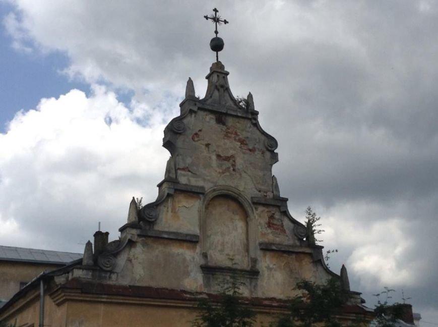 У Львові на дахах ростуть дерева. Як із ними бореться Садовий і чиновники (ФОТО), фото-5