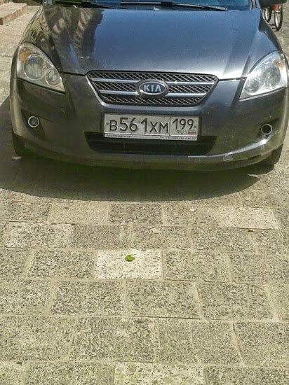 Як у Львові паркуються «москалі» (ФОТО), фото-1