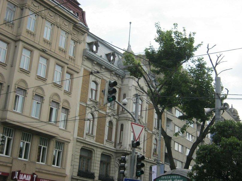 У центрі Львова зробили «зелену смугу» для трамваїв (ФОТО), фото-2