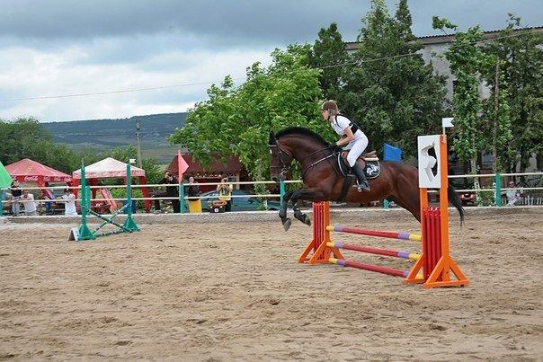 Ялтинская федерация конного спорта взяла первое в сезоне «золото», фото-1