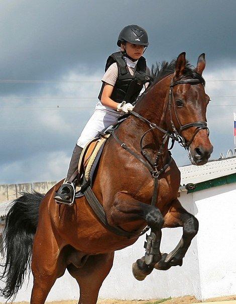 Ялтинская федерация конного спорта взяла первое в сезоне «золото», фото-2