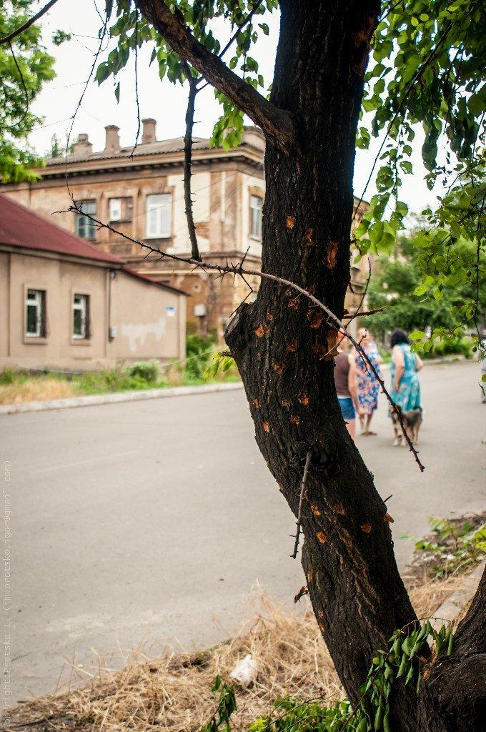 Мариуполь после АТО (ФОТОРЕПОРТАЖ Дополнено), фото-1