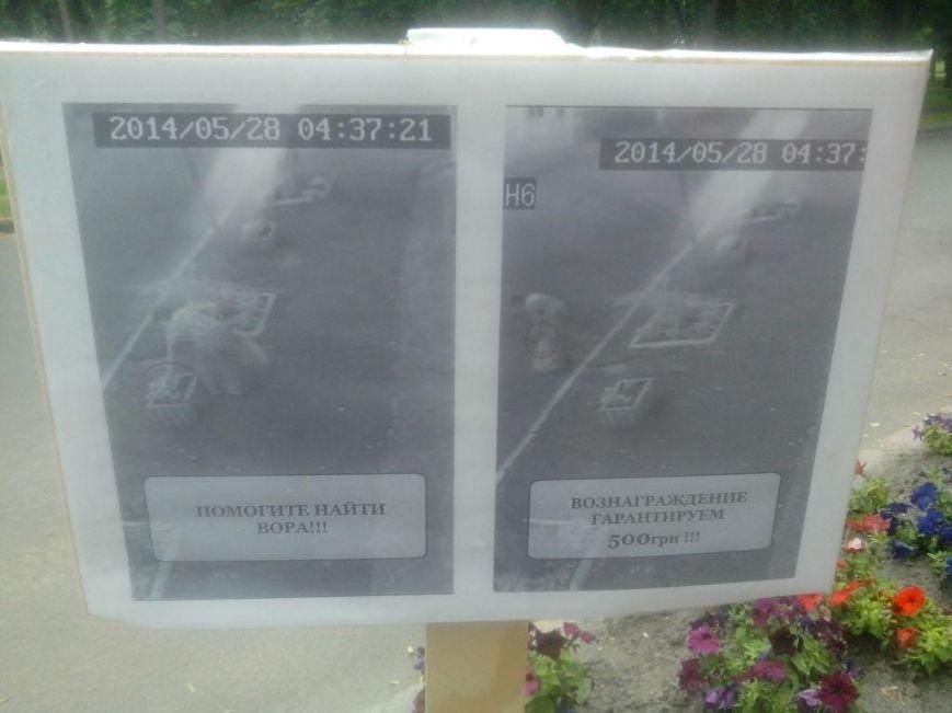 Черниговские клумбы подверглись разграблению, фото-2