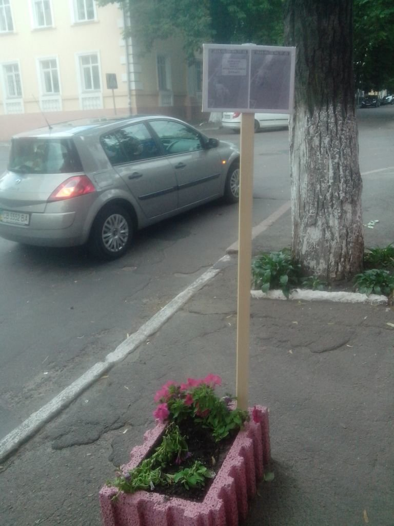 Черниговские клумбы подверглись разграблению, фото-1
