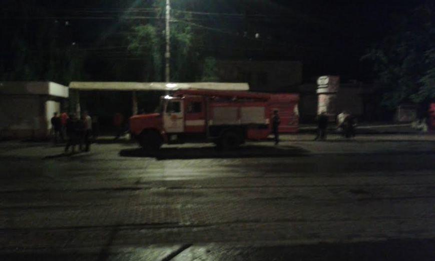 В  Мариуполе пожарные тушили задымившееся дерево (Фотофакт), фото-3