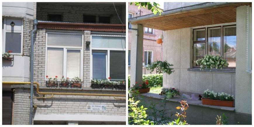 3 - Тернополя полюбляють прикрашати житло кв__тами