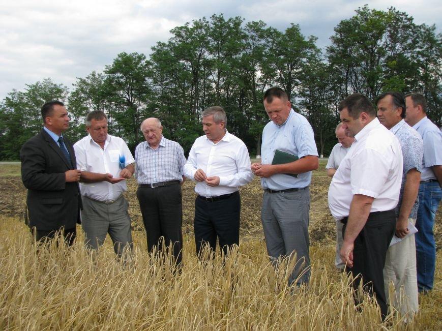 Дан прогноз продовольственной безопасности Днепропетровщины на следующий год (ФОТО), фото-1