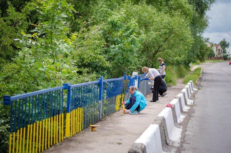 Біля Львова активісти розмалювали паркан у патріотичні барви (ФОТО), фото-3
