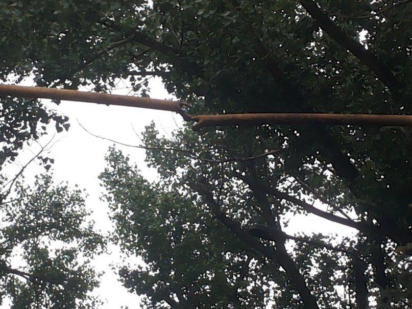 В Артемовске из-за обстрела воинской части пострадали газопроводы (ФОТО), фото-2