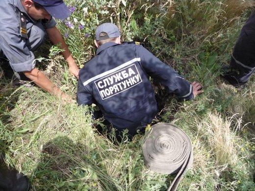 Спасатели на Луганщине освободили из люка козленка (ФОТО), фото-2