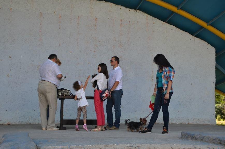 В Мариуполь на выставку собак привезли необычайно редкую породу – тазу (ФОТОРЕПОРТАЖ), фото-29