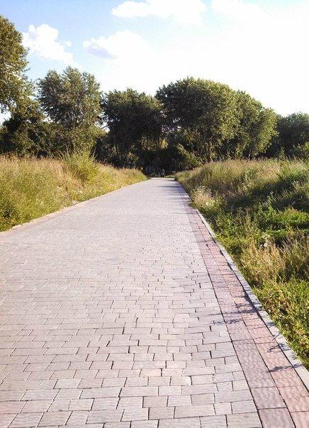Тернопільські парки заростають травою (фото), фото-4