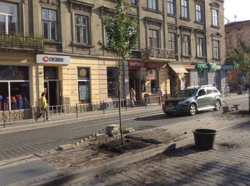На вул. Городоцькій з'явилися сакури (ФОТО), фото-2