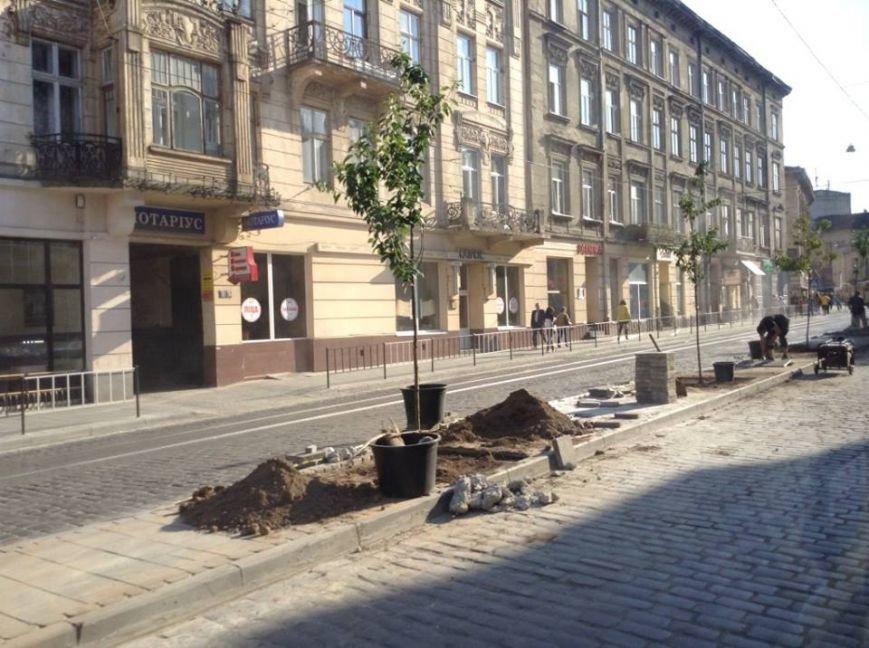 На вул. Городоцькій з'явилися сакури (ФОТО), фото-1