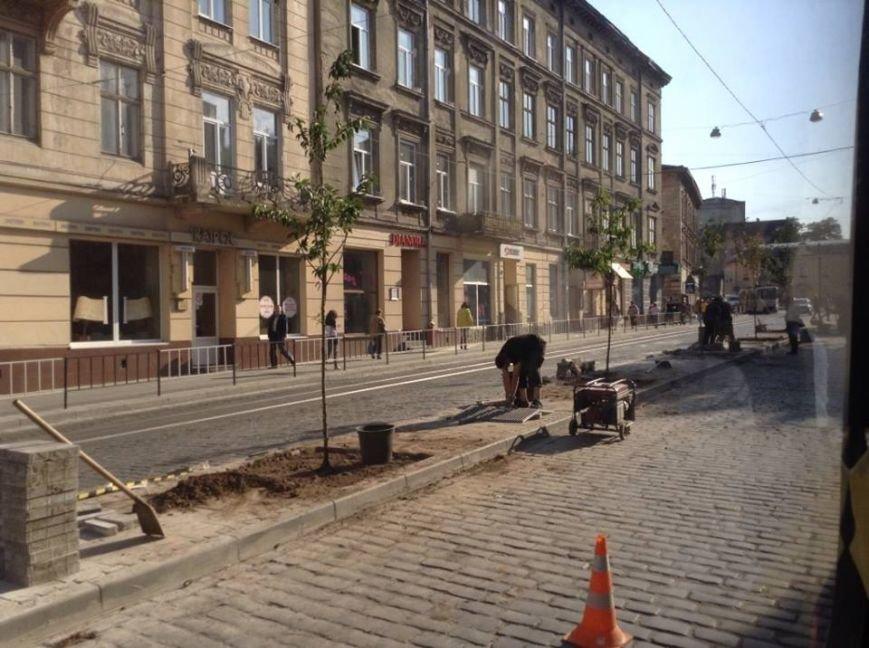 На вул. Городоцькій з'явилися сакури (ФОТО), фото-3