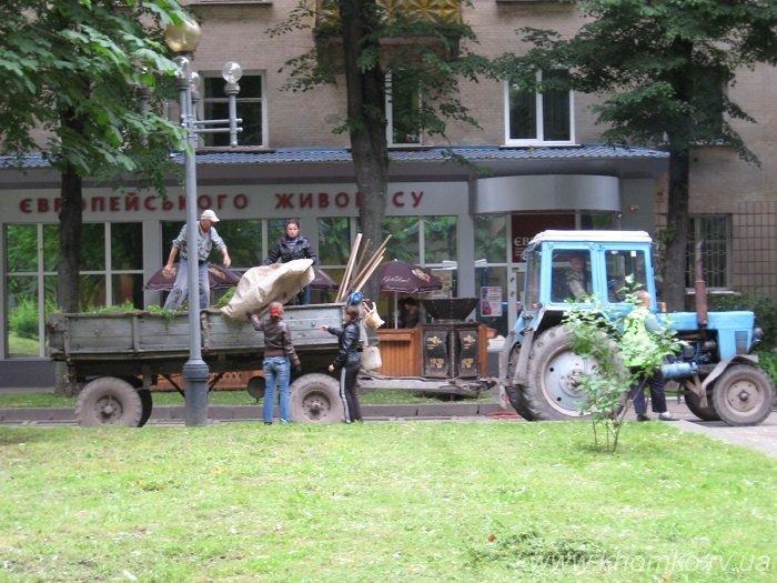 Трест зеленого господарства системно викошує траву на газонах Рівного (Фото), фото-1