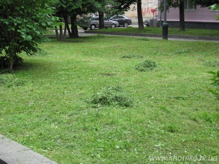 Трест зеленого господарства системно викошує траву на газонах Рівного (Фото), фото-3