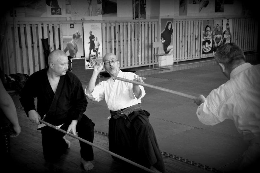 В Кривом Роге прошел семинар по одной из великих школ будзюцу, фото-3