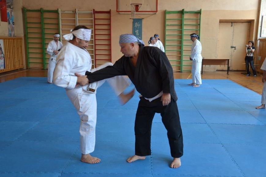 В Кривом Роге прошел семинар по одной из великих школ будзюцу, фото-1