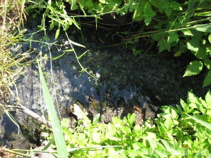 У Рівному ліквідували витікання каналізаційних стоків у грунт (Фото), фото-4