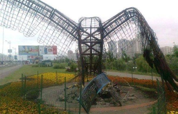 В Киеве сожгли белоголового орлана (ФОТО), фото-1