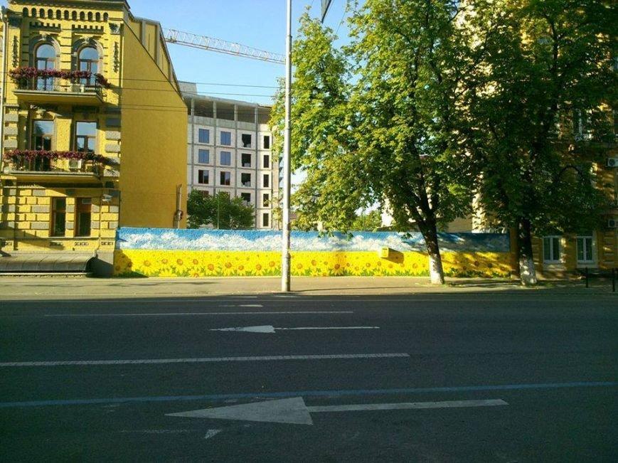 Патриотичный стрит-арт: Киев расписали золотыми подсолнухами (ФОТО), фото-1