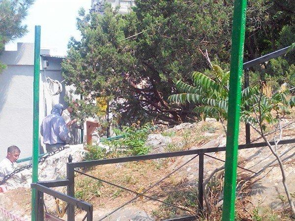 Вдоль Ласточкиного гнезда возводят забор, фото-1