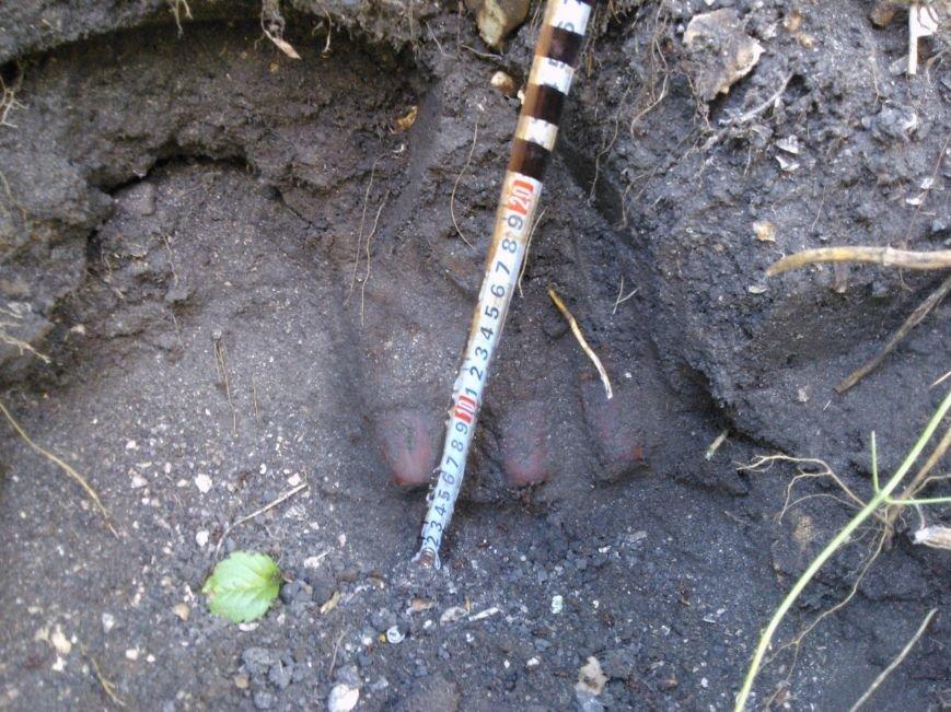 Возле железнодорожного пути в Сумской области нашли боеприпасы (ФОТО), фото-3