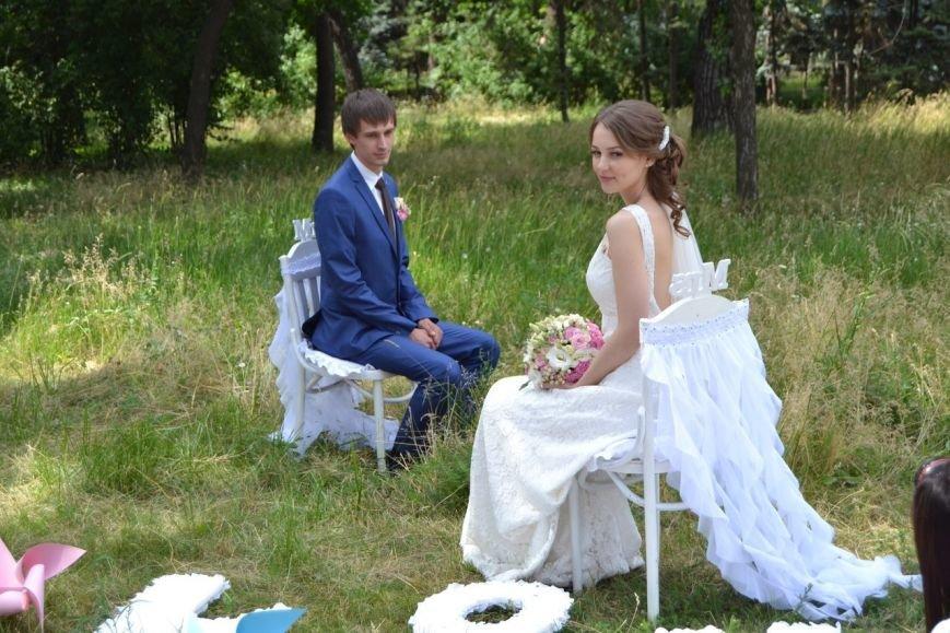 В Кривом Роге  провели выездную свадебную церемонию в парке «Правды», фото-1