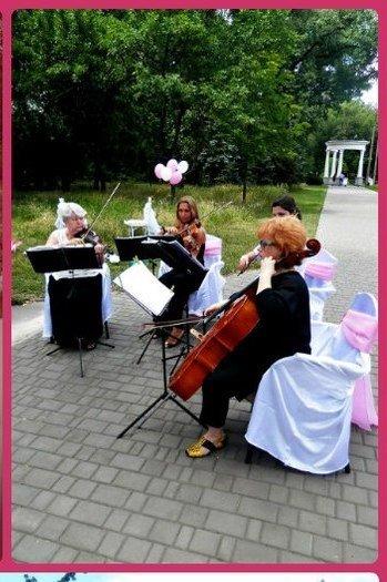 В Кривом Роге  провели выездную свадебную церемонию в парке «Правды», фото-5