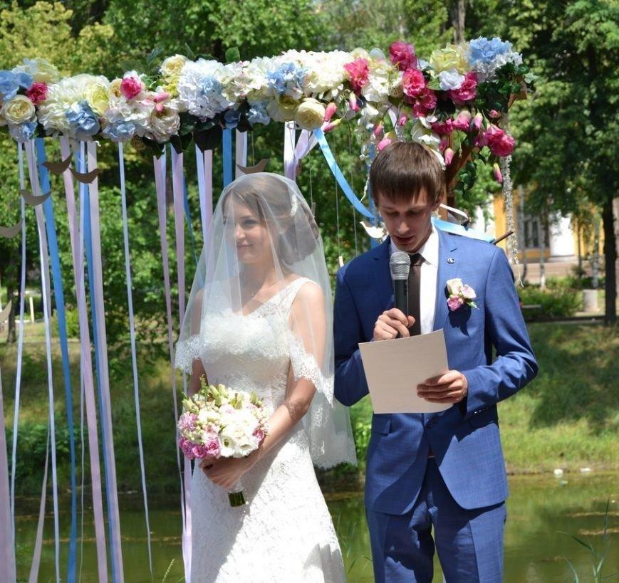 В Кривом Роге  провели выездную свадебную церемонию в парке «Правды», фото-3