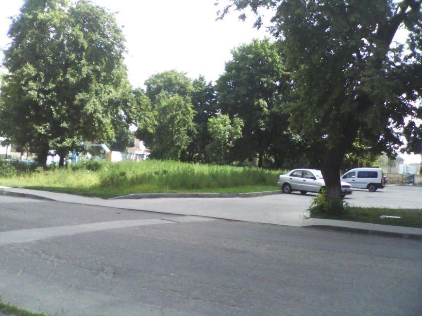 В Сумах «Авангард» зарос почти метровой травой (ФОТО), фото-1