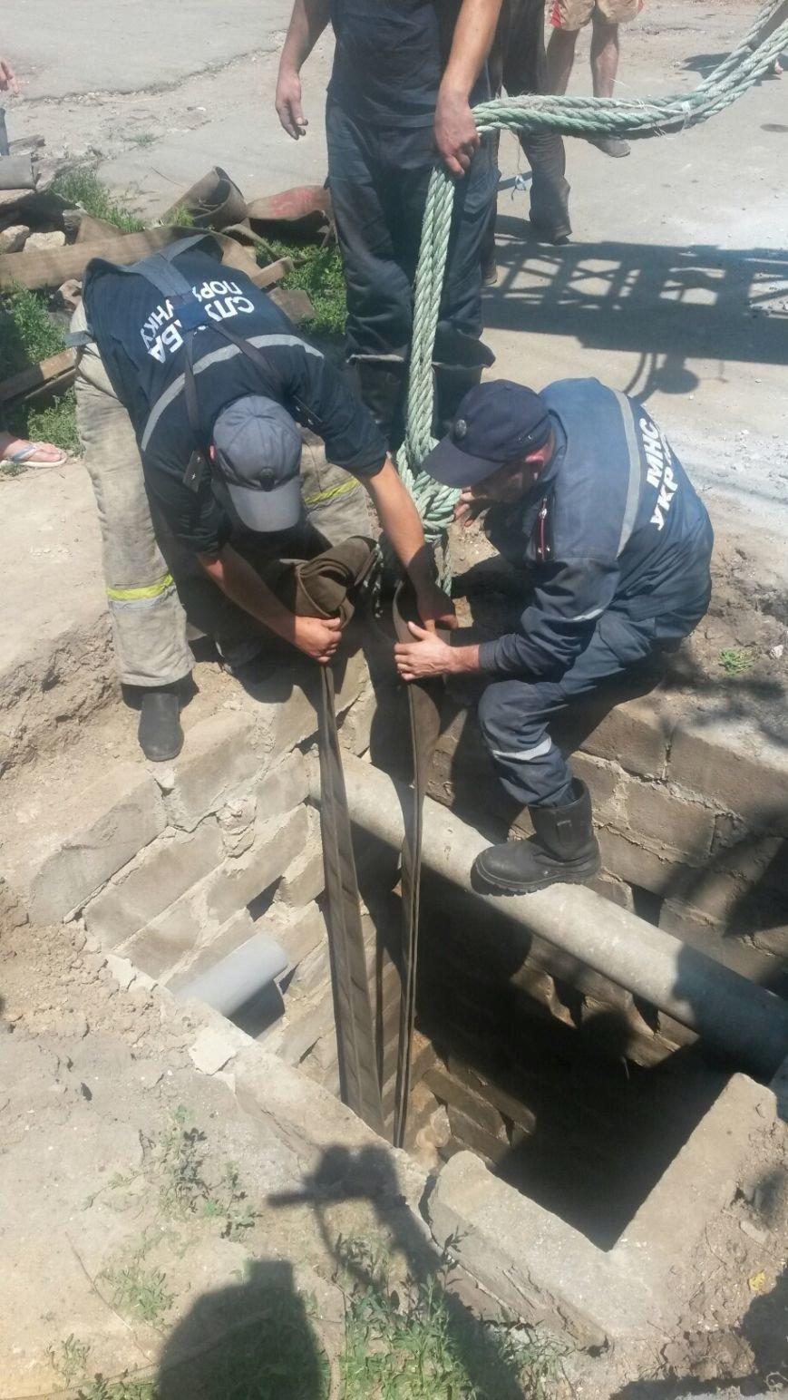 В Мариуполе спасают лошадь, провалившуюся в водопроводный колодец (ФОТО), фото-5