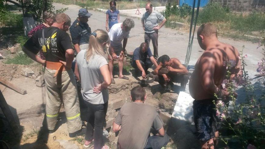 В Мариуполе спасают лошадь, провалившуюся в водопроводный колодец (ФОТО), фото-6