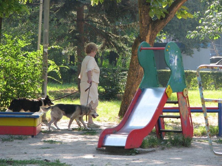 Парк трудовой славы: многолюдно и грязно (фото) - фото 5