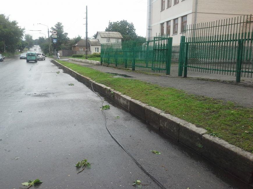 Поваленные деревья, сломанные ветки, оборванные провода: как вчера в Харькове стихия бушевала, фото-8
