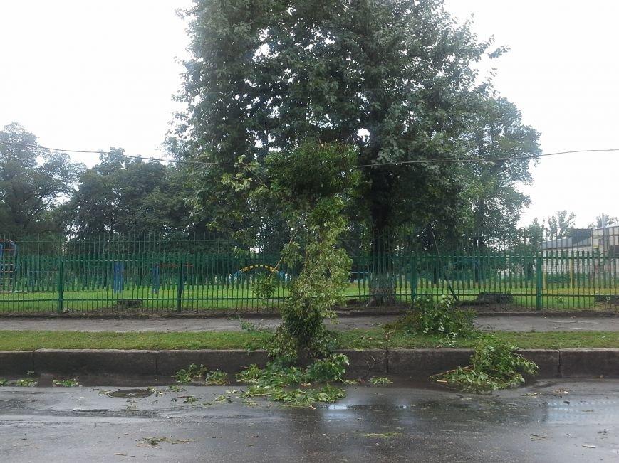 Поваленные деревья, сломанные ветки, оборванные провода: как вчера в Харькове стихия бушевала, фото-5