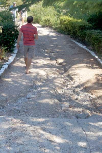 Как умирает жемчужина Крыма Форосский парк, фото-1