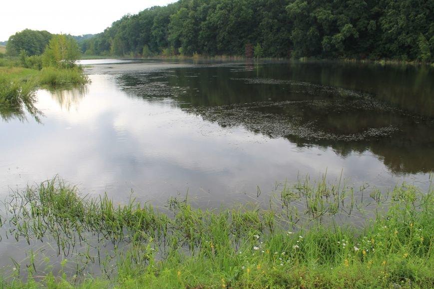 На Сумщине «диверсант» пытался разрыть плотину на пруду (ФОТО), фото-3